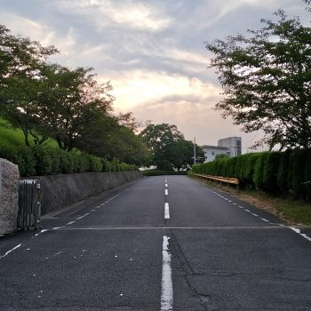 Zenfone Zoom S (ZE553KL) で撮影した風景写真3
